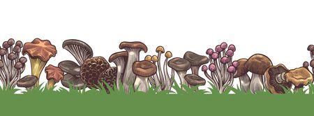 Mushrooms border. Seamless colorful sketch various mushroom in forest horizontal pattern, drawing vegetarian product vintage vector agaric frame