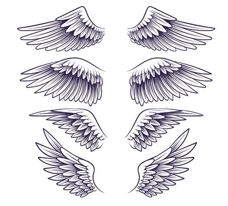 Hand drawn wing. Sketch angel wings with feathers, elements for label or tattoo. Stencil silhouettes vintage isolated vector drawing set 矢量图像