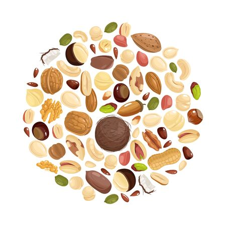 Nuts background. Various nuts in circle form. Peanut, hazelnut and pistachio, cashew and pecan, walnut. Brazil nut and almond vector food concept