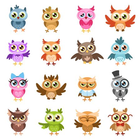 Owls. Color cute wise owl stickers, birthday kids shower funny forest birds with different gestures vector flat cartoon characters isolated set