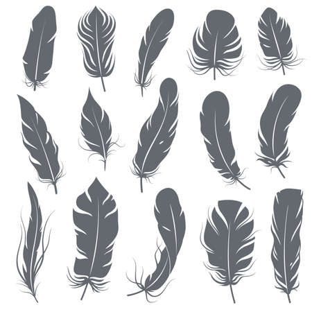 Feather silhouettes. Different feathering birds, graphic simple shapes pen decorative elements, black elegant vintage sketch plume wings vector isolated set