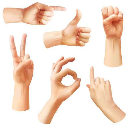 Realistic hand. Various gestures human hands, ok, thumb up and pointing finger, pinch and fist. Optimistic arm gesture, communication vector isolated symbols
