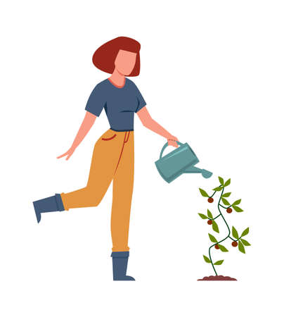 Woman watering plants in garden. Female character with watering can outdoors, backyard gardening concept, growing eco vegetables, cartoon flat vector isolated illustration Ilustração
