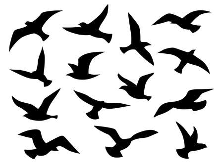 Bird silhouettes. Flying birds flock, black drawing flight raven tattoo template, monochrome seagull or eagle in sky, animal wild life migration vector isolated set