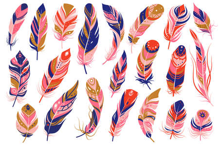 Tribal feathers. Decorative ethnic stylize feather ornamental indian aztec design, colored boho hippie birds plume curved silhouettes, vector isolated set Ilustração