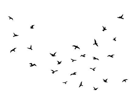 Flying bird. Flock of birds black silhouettes, abstract flight migration animal wildlife, creative drawing simple seagull shapes decorative element vector isolated illustration