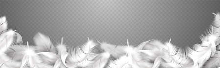 White feathers. Realistic curve frame with fluffy bird plume, falling softness goose, hen or swan close up plumage, style smooth border for banner poster or flyer vector isolated illustration