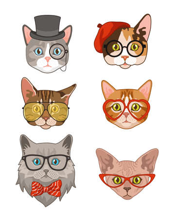 Hipster cat. Funny cats avatar with hats and bow tie, glasses and sunglasses, animals portrait smart fashion characters collection vintage kittens trendy t-shirt print flat cartoon vector isolated set