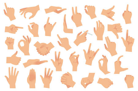Hand gestures. Various arms, human hands, ok, thumb up and pointing finger, pinch and fist. Optimistic or pessimistic arm gesture, interactive communication vector flat cartoon isolated set