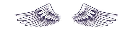 Sketch angel wings. Flying hand drawn wing, feathers decoration of heaven bird. tattoo design element,  vector single isolated on white icon.
