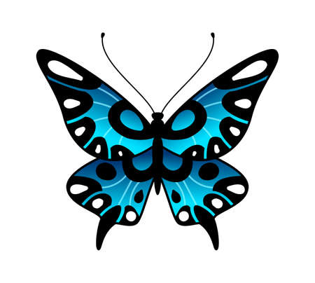 Butterfly. Colorful stylized summer flying insect, bright design in black and blue colors, minimalist decorative macro ornamental element, simple single flat cartoon vector isolated illustration