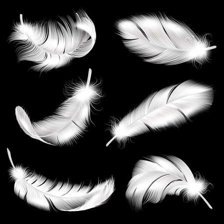 White feathers realistic set. Falling fluffy twirled bird plume in different angle, 3d flying angel or swan quill. Symbol of lightness and softness, vector isolated collection
