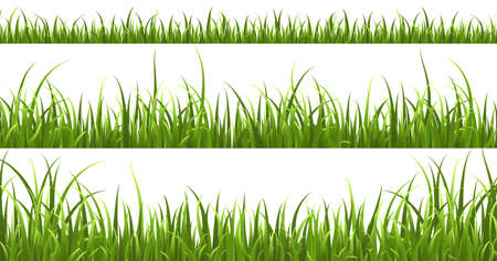 Green grass horizontal borders. Lawn shape meadow landscape collection, panorama summer nature herbs, bright hedge pattern, spring decorative elements, botanical frame vector isolated set