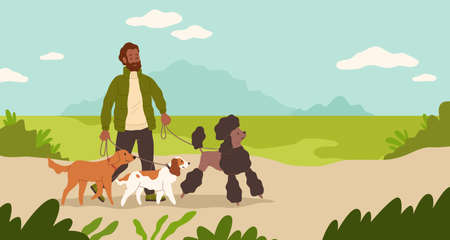 Dogsitter. Man walking dogs in park. Male character leads puppies on leashes. Sitter takes care of pets. Person with domestic animals outdoor. Groomers activity. Vector illustration