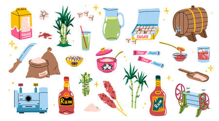 Cartoon sugarcane. Bamboo agriculture products. Sugar and rum manufacturing. Tropical cane plants with leaves and stems. Refined sweet pieces. Vector sweetener production elements set