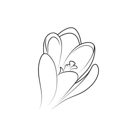 crocus: crocus flower lined minimal Icon Created For Mobile, Web And Applications. Simple black icon isolated on white background. Vector illustration. Illustration