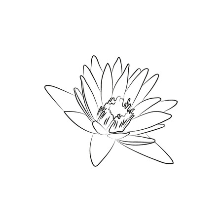 beautiful lily or lotous flower lined minimal Icon Created For Mobile, Web And Applications. Simple black icon isolated on white background. Vector illustration.