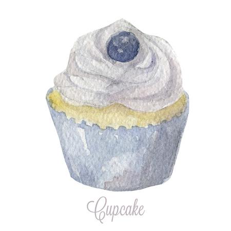 blueberry muffin: Hnd drawn cupcake.  Illustration