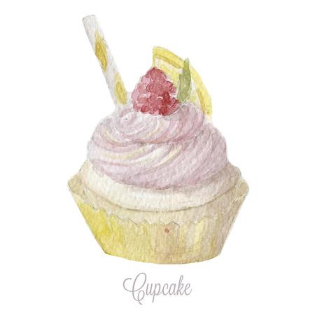 cupcake illustration: Hand drawn cupcake. Watercolor vector illustration eps10