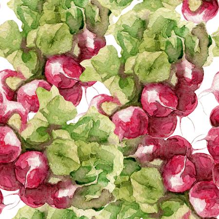 radish: Seamless pattern of radish watercolor on white