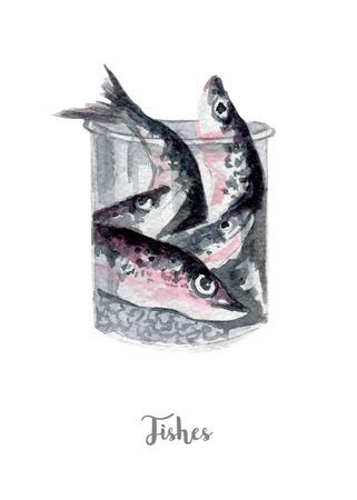 fresh fish illustration. Hand drawn watercolor on white background. Reklamní fotografie - 79607229