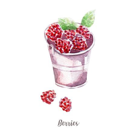 新鮮な果実のイラスト。手描き水彩ホワイト バック グラウンド。