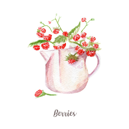 fresh berries illustration. Hand drawn watercolor on white background.