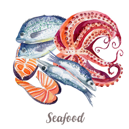 Seafood illustration. Hand drawn watercolor on white background. Stock Photo