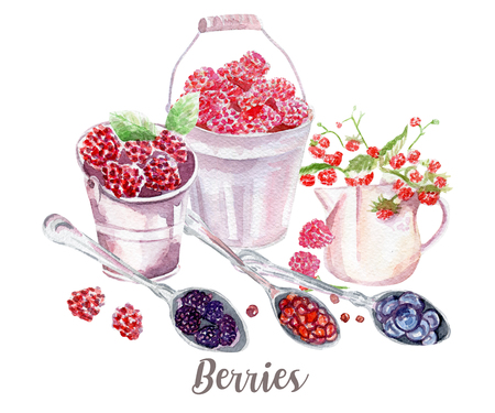 berries illustration. Hand drawn watercolor on white background. Stock Photo