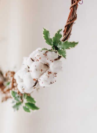 wreath of dried flowers with cotton decorated on white background