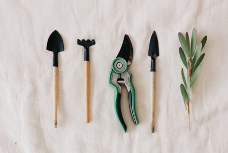 tool for decorating flowers on a white background