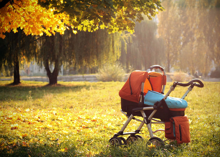 baby carriage autumn park yellow leaves
