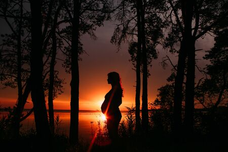 pregnant woman in profile silhouette outside sunset forest