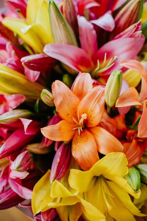 bouquet of bright flowers yellow red orange flowering petals Фото со стока
