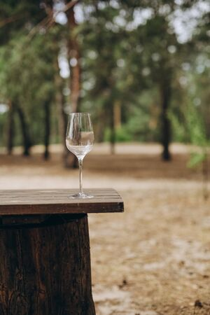 glass of wine on the table fun outside in the garden nature ecology lifestyle forest