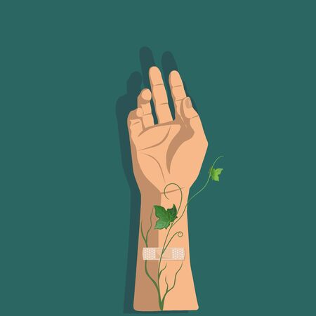 Hand of the person with plaster and veins and green leafs