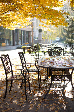 table and chairs in cafe outside park trees autumn golden fallen leaves