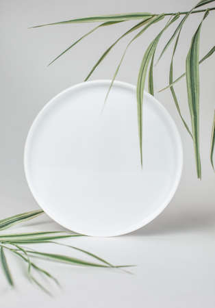 round mirror with green palm leaves on white background 版權商用圖片