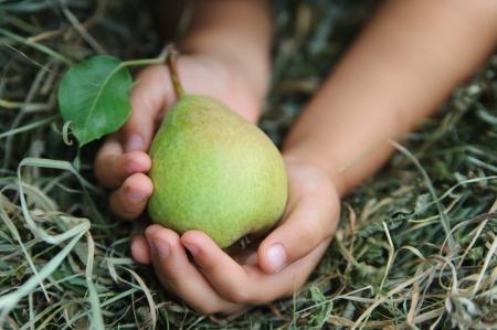 Les mains de deux enfants sont gard�s soigneusement poire Banque d'images