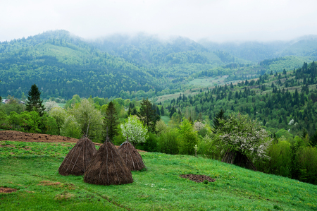 Mountain landscape. Carpathians. Haystacks and mountains covered in mist