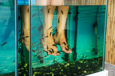 Peeling feet fish. Aquarium with fish that make peeling the legs woman.