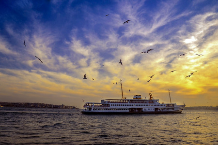 the marmara: Sea of ??Marmara, the Bosphorus in the evening. ferry at sunset and seagulls.