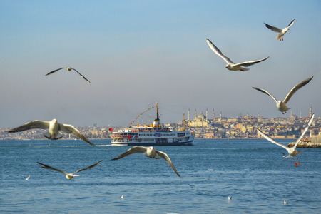 ferries: Istanbul, Turkey - February 2, 2014: Icon is one of the ferries in Istanbul.
