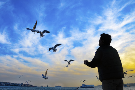 Istanbul, Turkey - February 2, 2014: Sea of ??Marmara, the Bosphorus in the evening. sunset, seagulls and people Editorial
