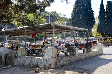 hackney carriage: Istanbul, Turkey - September 29, 2013: Buyukada, Princes Islands, also known as Istanbul is the largest of the islands off the coast. Buyukada  motor vehicle is not being used, such as Phaeton carriage taxi service is.