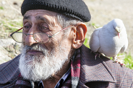 bespectacled: Istanbul, Turkey - January 01, 2015: White Bearded Grandfather and Pigeons friendly. Istanbul Topkapi bird markets, bird seller grandfather, was seen with pigeon on shoulder.