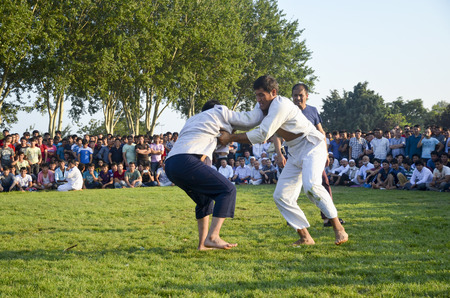 middle east fighting: Istanbul, Turkey - July 31, 2016: Central Asian Turkmen wrestling. in Zeytinburnu district of Istanbul, Turkmen wrestling sports events held in the coastal meadows. Turkmen, Uzbek, Afghan, Turkish, Turkmenistan, Kazakhstan, Turkey and other Central Asian  Editorial