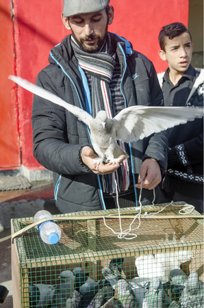 Istanbul, Turkey - January 01, 2015: Outdoor Bird Market in Istanbul. Topkapi Edirnekapi bird market every week on Saturdays and Sundays open market. Day 1000 - 1500 people are said to have visited the market. in many colors in the market, many species ar