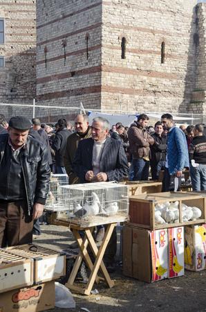 Istanbul, Turkije - 1 januari 2015: Outdoor Bird Market in Istanbul. Topkapi Edirnekapi-vogelmarkt elke week op zaterdag en zondag open markt. Dag 1000 - 1500 mensen zouden de markt hebben bezocht. in veel kleuren op de markt, veel soorten ar