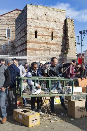 Istanbul, Turkije - 1 januari 2015: Openlucht Markt van de Vogel in Istanbul. Topkapi Edirnekapi vogelmarkt elke week op zaterdag en zondag open markt. Dag 1000 - 1500 mensen zijn zei dat de markt te hebben bezocht. in vele kleuren in de markt, vele soorten ar